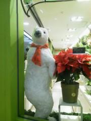 佐藤未帆 (しながわてれび出演ブログ) 公式ブログ/かわいい クリスマス 画像1