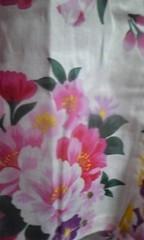 佐藤未帆 (しながわてれび出演ブログ) 公式ブログ/浴衣 柄 画像1