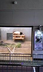 佐藤未帆 (しながわてれび出演ブログ) 公式ブログ/パンダ 画像3