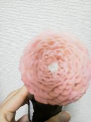 佐藤未帆 (しながわてれび出演ブログ) 公式ブログ/今日のお花 画像1