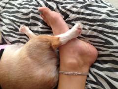 アクア新渡戸 公式ブログ/絡み合う2人の足(笑) 画像1