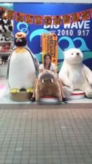 アクア新渡戸 公式ブログ/海象にのちゃった(笑) 画像1