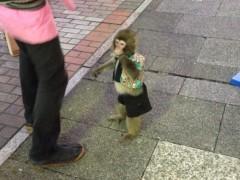 アクア新渡戸 公式ブログ/二歳の子! 画像1