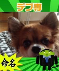 アクア新渡戸 公式ブログ/毒舌ニックネーム 画像1