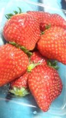 アクア新渡戸 公式ブログ/苺 画像2
