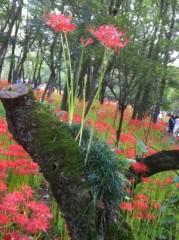 七瀬あずみ 公式ブログ/2011-09-30 00:24:20 画像1