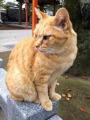 七瀬あずみ 公式ブログ/2011-10-12 00:05:18 画像1