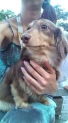 落合真理 公式ブログ/愛犬チョコです☆ 画像1