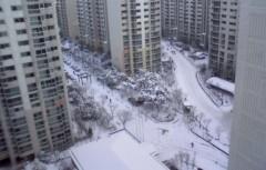 ジャン ヒョジョン 公式ブログ/雪! 雪! 雪! 画像1