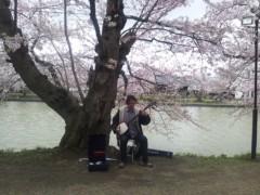 川上麻衣子 公式ブログ/満開の弘前ー2 画像3