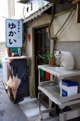 川上麻衣子 公式ブログ/谷中散歩 画像1