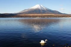 川上麻衣子 公式ブログ/仕事始め 画像1