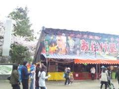 川上麻衣子 公式ブログ/満開の弘前ー4 画像2