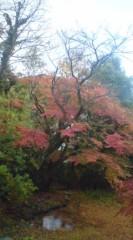 川上麻衣子 公式ブログ/秋の贈り物 画像3