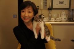 川上麻衣子 公式ブログ/現在のbicchi 画像1