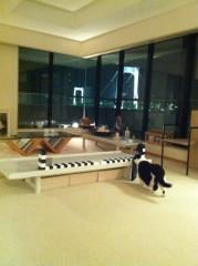 川上麻衣子 公式ブログ/MAJKOの猫 画像2