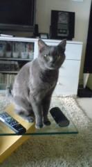 川上麻衣子 公式ブログ/招き猫 画像2