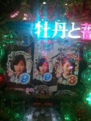 川上麻衣子 公式ブログ/牡丹と薔薇 画像1