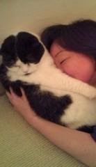 川上麻衣子 公式ブログ/猫取材 画像2