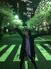 川上麻衣子 公式ブログ/桜満開 画像2