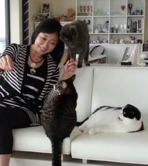 川上麻衣子 公式ブログ/猫取材後の空 画像1