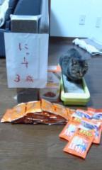 川上麻衣子 公式ブログ/猫談義 画像2