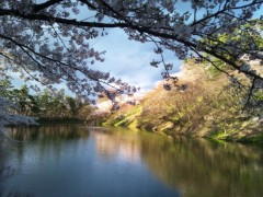 川上麻衣子 公式ブログ/青森から 画像1