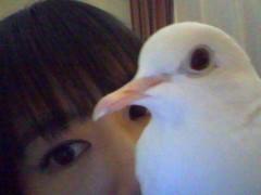 小泉ポロン 公式ブログ/草津2日目 画像1