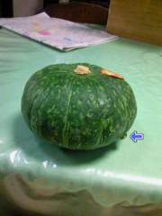 小泉ポロン 公式ブログ/かぼちゃに・・・、 画像1