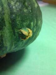 小泉ポロン 公式ブログ/かぼちゃに・・・、 画像2
