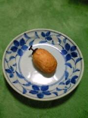 小泉ポロン 公式ブログ/干し柿風 画像1