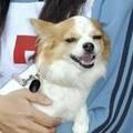 小泉ポロン 公式ブログ/最強過ぎる 画像3