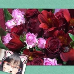 小泉ポロン 公式ブログ/今日はイリュージョン 画像1