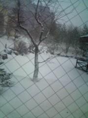 小泉ポロン 公式ブログ/吹雪いてきました 画像3