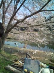小泉ポロン 公式ブログ/被災地へ 画像3