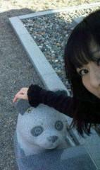 小泉ポロン 公式ブログ/石のパンダ 画像3