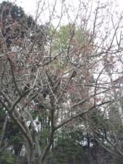 大塚宝 公式ブログ/終わった〜♪ 画像2