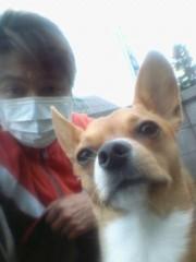 大塚宝 公式ブログ/今朝の愛犬「大地」くん! 画像1