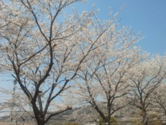大塚宝 公式ブログ/美しい! 画像1