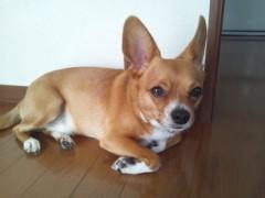 大塚宝 公式ブログ/奥州♪ 画像1