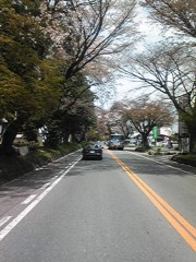 大塚宝 公式ブログ/今日は! 画像1
