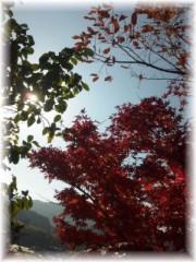 岩村さちこ 公式ブログ/お久しぶりです 画像2