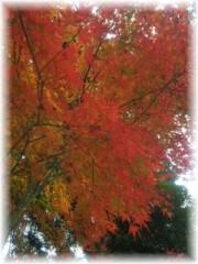 岩村さちこ 公式ブログ/赤 オレンジ 黄色 画像2