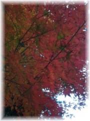 岩村さちこ 公式ブログ/赤 オレンジ 黄色 画像1