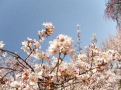 野呂陽菜 公式ブログ/はぅ。 画像1