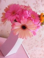 野呂陽菜 公式ブログ/花粉症にゃり 画像2