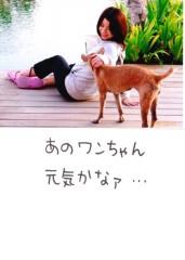 桐野澪 公式ブログ/犬ちゃん 画像1
