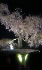 桐野澪 公式ブログ/ひそかに行きました 画像1