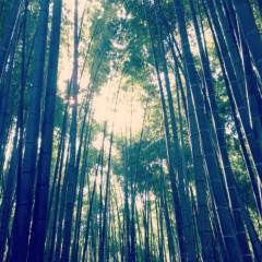 華 みき 公式ブログ/鎌倉へ 画像1