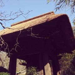 華 みき 公式ブログ/鎌倉へ 画像2